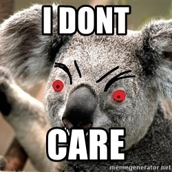 Abortion Koala - i dont care