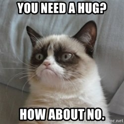 Grumpy Cat 10 - you need a hug? how about no.