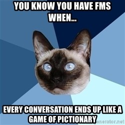 Chronic Illness Cat - you know you have fms when... every conversation ends up like a game of pictionary