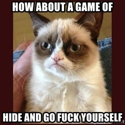 Tard the Grumpy Cat - how about a game of hide and go fuck yourself