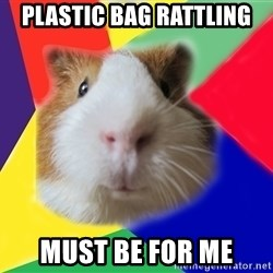 Typical guinea pig - plastic bag rattling must be for me
