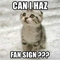 Can haz cat - can i haz fan sign ???
