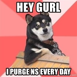 Cool Dog - hey gurl i purge ns every day