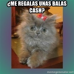 cute cat - ¿Me regalas unas balas cash?