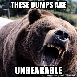 Bear week - THESE DUMPS ARE UNBEARABLE