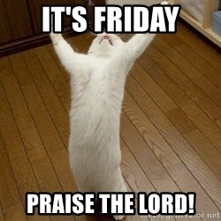 praise the lord cat - IT'S FRIDAY PRAISE THE LORD!