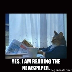 i should buy a boat cat -  YES, I AM READING THE NEWSPAPER.