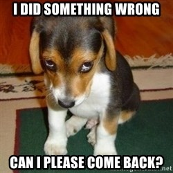 sorry dog - I did something wrong can I please come back?