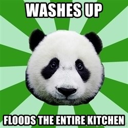 Dyspraxic Panda - Washes up Floods the entire kitchen