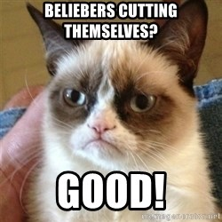 Grumpy Cat  - beliebers cutting themselves? Good!