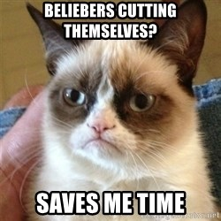 Grumpy Cat  - BELIEBERS CUTTING THEMSELVES? saves me time