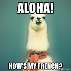Pancakes llama - aloha! how's my french?