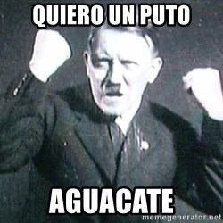 Successful Hitler - quiero un puto aguacate