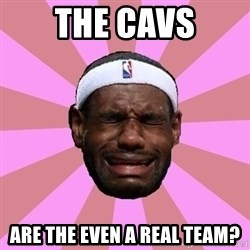 LeBron James - the cavs are the even a real team?