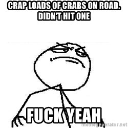 Fuck Yeah - Crap loads of crabs on road. didn't hit one fuck yeah