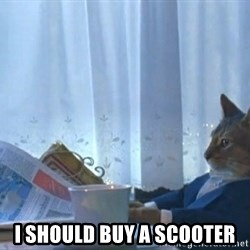 Suit cat -  I should buy a scooter