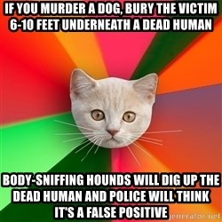 Advice Cat - If you murder a dog, bury the victim 6-10 feet underneath a dead human Body-sniffing hounds will dig up the dead human and police will think it's a false positive