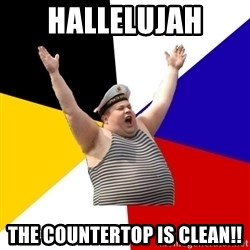Patriot - HALLELUJAH the countertop is clean!!