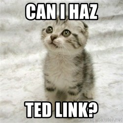 Can haz cat - Can I haz TED link?