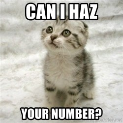Can haz cat - Can I Haz Your Number?