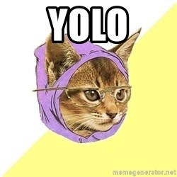 Hipster Kitty - YOLO