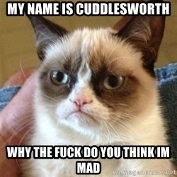 Grumpy Cat  - my name is cuddlesworth why the fuck do you think im mad