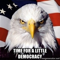 American Pride Eagle -  Time for a little democracy