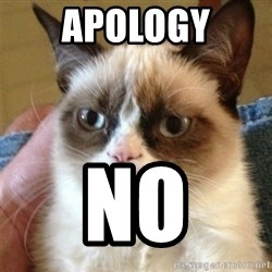 Grumpy Cat  - apology no