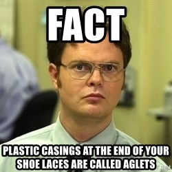 Dwight Schrute - Fact plastic casings at the end of your shoe laces are called aglets