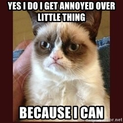 Tard the Grumpy Cat - yes i do i get annoyed over little thing because i can