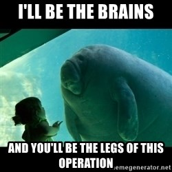 Overlord Manatee - i'll be the brains and you'll be the legs of this operation