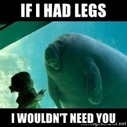 Overlord Manatee - if i had legs i wouldn't need you