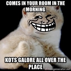 Trollcat - COMES IN YOUR ROOM IN THE MORNING KOTS GALORE ALL OVER THE PLACE
