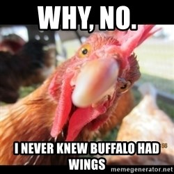 WTF Chicken - Why, no.  I never knew buffalo had wings
