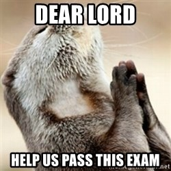Praying Otter - Dear lord help us pass this exam