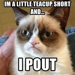 Grumpy Cat  - im a little teacup short and... i pout