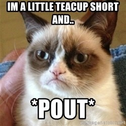 Grumpy Cat  - im a little teacup short and.. *pout*