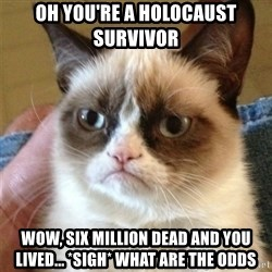 Grumpy Cat  - oh you're a holocaust survivor wow, six million dead and you lived... *sigh* what are the odds