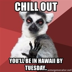 Chill Out Lemur - Chill out You'll be in Hawaii by Tuesday..