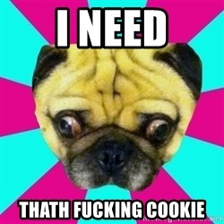 Perplexed Pug - i need thath fucking cookie