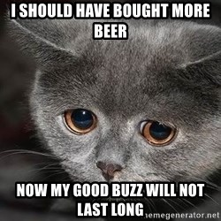 Sadcat - I should have bought MORE BEER Now my good buzz will not last long