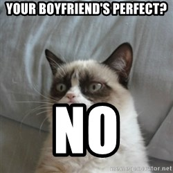 Grumpy Cat ={ - Your boyfriend's perfect? No