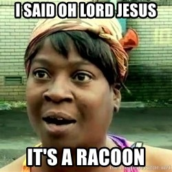 oh lord jesus it's a fire! - i said oh lord jesus it's a racoon
