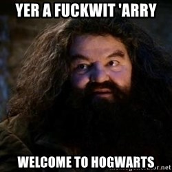 Yer A Wizard Harry Hagrid - yer a fuckwit 'arry welcome to hogwarts