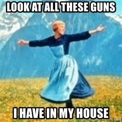 look at all these things - Look at all these guns i have in my house