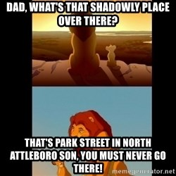 Lion King Shadowy Place - DAD, WHAT'S THAT SHADOWLY PLACE OVER THERE? THAT'S PARK STREET IN NORTH ATTLEBORO SON, YOU MUST NEVER GO THERE!