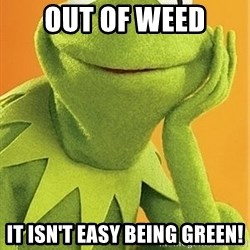 Kermit the frog - out of weed It isn't easy being green!