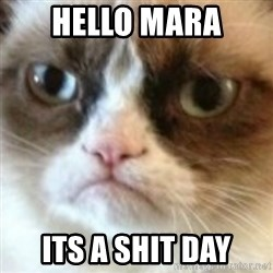 angry cat asshole - HELLO MARA Its a shit day