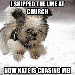 Cute Dog - I skipped the line at church now kate is chasing me!
