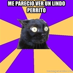 Anxiety Cat - Me parecio ver un lindo perrito